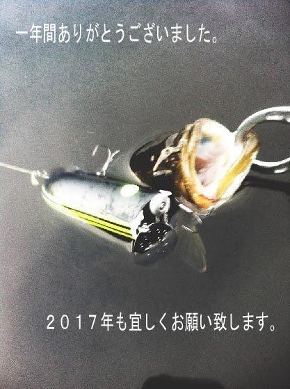 2016_12_30.jpg